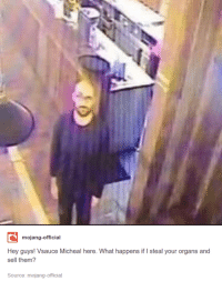 Hey guys! Vsauce Micheal here: mojang-official  Hey guys! Vsauce Micheal here. What happens if I steal your organs and  sell them?  Source: mojang-official Hey guys! Vsauce Micheal here