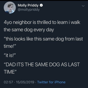 Molly Guys That Play Video Games Are the Most Loyal Gamers