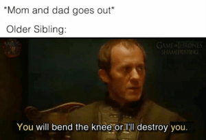 sibling: Mom and dad goes out*  Older Sibling:  GAME of THRONES  SHAMEPOSTING  You will bend the knee or lll destroy you.