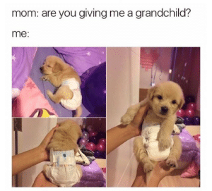 Mom, You, and Are You: mom: are you giving me a grandchild?  me: