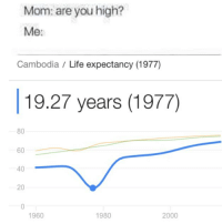 Life, Memes, and Mom: Mom: are you high?  Me:  Cambodia / Life expectancy (1977)  19.27 years (1977)  80  60  40  20  1960  1980  2000