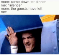 "Silence, MeIRL, and Mom: mom: come down for dinner  me: ""silence  mom: the guests have left  me: meirl"
