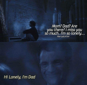 Dad, Memes, and Mom: Mom? Dad? Are  you there? I miss you  so much. I'm so lonely...  HarrysLetter  Hi Lonely, I'm Dad