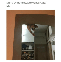 "I want pizza offcourse (@hilarious.ted): Mom: ""Dinner time, who wants Pizza?""  Me  hilarious ted I want pizza offcourse (@hilarious.ted)"