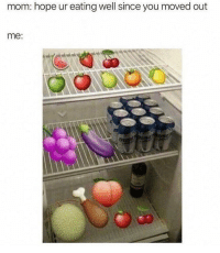 Memes, Hope, and Mom: mom: hope ur eating well since you moved out  me: Just stocked up on my fruits and vegetables. Things are going great mom! @memes