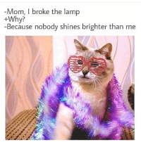 Fam, Memes, and Mom: Mom, I broke the lamp  +Why?  Because nobody shines brighter than me Shine bright fam 🙌🏻🙌🏻😂😂gem via @edmhumor