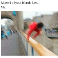 Memes, Mom, and All Your Friends: Mom: If all your friends jum...  Me hell yeah i would mom!!