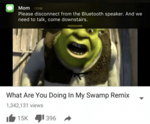 Bluetooth, Dank, and Memes: Mom now  Please disconnect from the Bluetooth speaker. And we  need to talk, come downstairs.  What Are You Doing In My Swamp Remix  1,342,131 views  396  15K Please disconnect the speaker by ayyAndrew_ FOLLOW 4 MORE MEMES.