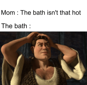 Memes, Mom, and Via: Mom The bath isn't that hot  The bath He's sooooo hot <3 via /r/memes https://ift.tt/2peCTIy