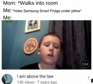 Be Like, Memes, and Target: Mom: *Walks into room  Me: hides Samsung Smart Fridge under pillow*  Me:  3:34  I am above the law  14K views 7 years ago 30-minute-memes:  It do be like that often