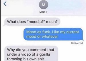 "Mood af: Mom  What does ""mood af"" mean?  Mood as fuck. Like my current  mood or whatever  Delivered  Why did you comment that  under a video of a gorilla  throwing his own shit Mood af"