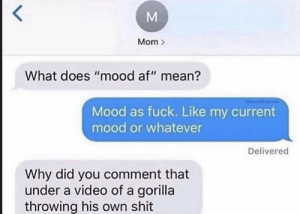 "me_irl: Mom  What does ""mood af"" mean?  Mood as fuck. Like my current  mood or whatever  Delivered  Why did you comment that  under a video of a gorilla  throwing his own shit  M me_irl"