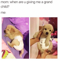 Funny, Goals, and Grand: mom: when are u giving me a grand  child?  me: Kid goals😍😍🙌🏻