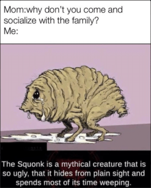 So Ugly: Mom:why don't you come and  socialize with the family?  Me:  oosts  The Squonk is a mythical creature that is  so ugly, that it hides from plain sight and  spends most of its time weeping.