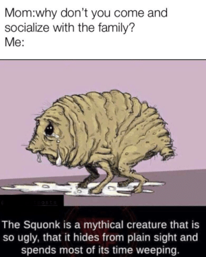 Squonker by Ryan_The_Rhino14 MORE MEMES: Mom:why don't you come and  socialize with the family?  Me:  The Squonk is a mythical creature that is  so ugly, that it hides from plain sight and  spends most of its time weeping. Squonker by Ryan_The_Rhino14 MORE MEMES