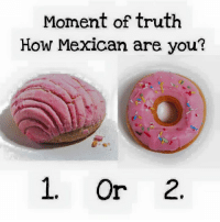 Memes, Mexican, and Truth: Moment of truth  How Mexican are you?  1. Or 2. 1 or 2 ?