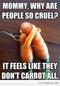 tldr: MOMMY, WHY ARE  PEOPLE SO CRUEL?  IT FEELS LIKE THEY  DON'T CARROT ALL  TL DR DAMNLOLCOM