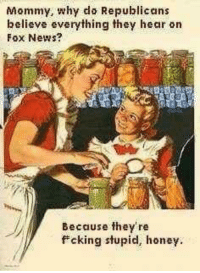Memes, 🤖, and Fox: Mommy, why do Republicans  believe everything they hear on  Fox News?  Because they're  f cking stupid, honey.