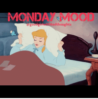 Wake me up when it's Tuesday 😴 goodgirlwithbadthoughts 💅🏽: MONDA  MOOL  badthoughts  a good Wake me up when it's Tuesday 😴 goodgirlwithbadthoughts 💅🏽