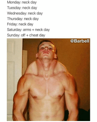 Friday, Memes, and Wednesday: Monday: neck day  Tuesday: neck day  Wednesday: neck day  Thursday: neck day  Friday: neck day  Saturday: arms+ neck day  Sunday: off + cheat day  @Barbell Shawty give me neck till I pass out (@barbell)