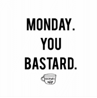 How was your day?  Vent about your Monday if it sucked.  Or tell us how good your day was if it was decent.    #mondayblues: MONDAY  YOU  BASTARD  THE KOPIWRITE How was your day?  Vent about your Monday if it sucked.  Or tell us how good your day was if it was decent.    #mondayblues