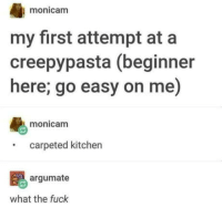 Omg, Tumblr, and Blog: monicamm  my first attempt ata  creepypasta (beginner  here; go easy on me)  monicanm  carpeted kitchen  argumate  what the fuck omg-humor:  Sick man, sick