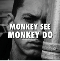Copycats be all over my shit eminem: MONKEY SEE  MONKEY DO Copycats be all over my shit eminem