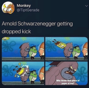 Arnold Schwarzenegger, Monkey, and Light: Monkey  @TiptGerade  Arnold Schwarzenegger getting  dropped kick  Who threw that plece of  paper at me? In light of recent events.