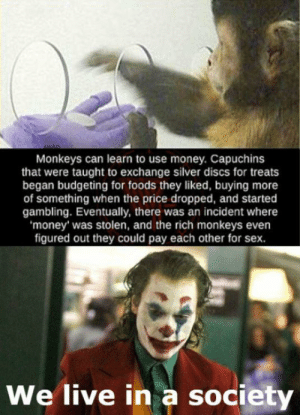 We have the same behaviour as monkeys: Monkeys can learn to use money. Capuchins  that were taught to exchange silver discs for treats  began budgeting for foods they liked, buying more  of something when the price dropped, and started  gambling. Eventually, there was an incident where  'money' was stolen, and the rich monkeys even  figured out they could pay each other for sex.  We live in a society We have the same behaviour as monkeys