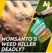 Memes, Weed, and Cancer: MONSANTO'S  WEED KILLER  DEADLY?  NRAP  herbes par  1.2L Monsanto's signature weed killer Roundup is accused of causing cancer – and now a trial has begun.