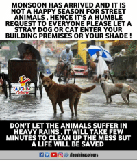 Animals, Life, and Shade: MONSOON HAS ARRIVED AND IT IS  NOTA HAPPY SEASON FOR STREET  ANIMALS. HENCE IT'S A HUMBLE  REQUEST TO EVERYONE PLEASE LET A  STRAY DOG OR CAT ENTER YOUR  BUILDING PREMISES OR YOUR SHADE!  LAUGHINO  Colowrs  DON'T LET THE ANIMALS SUFFER IN  HEAVY RAINS, IT WILL TAKE FEW  MINUTES TO CLEAN UP THE MESS BUT  A LIFE WILL BE SAVED
