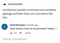 me_irl: monstrevoid  sometimes youtube comments are complete  garbage and then there are comments like  this  David McCracken 8 months ago  Great workout music for my pet snails! Thanks!:)  309 aji REPLY  Source: monstrevoid me_irl