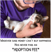 Cats, Instagram, and Love: MONTYBoY.NET  WHOEVER SAID MONEY CANT BUY HAPPINESS  HAS NEVER PAID AN  *ADOPTION FEE* Can you relate? 💜 MontyBoy.net ilovemycat catdad MyKidHasFur catstagram cats_of_world cats_of_instagram adoptdontshop dailykitten meow love lovecats
