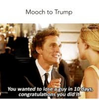 Love, Memes, and Congratulations: Mooch to Trump  etches  betches.co  You wanted to lose a guy in 10days  congratulations you did it In fairness the love fern was a bit much