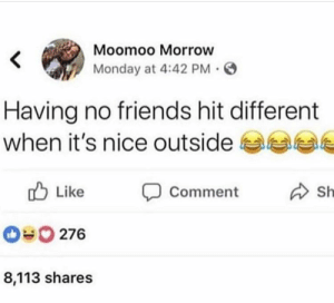 Friends, Monday, and Nice: Moomoo Morrow  Monday at 4:42 PM .  Having no friends hit different  when it's nice outside  Sh  Like  comment  Like  sh  276  8,113 shares