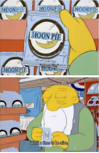 The Simpsons: MOON PI  MOON PIR  atime tobea The Simpsons