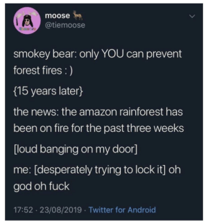 Smokey makes good on his threats: moose  @tiemoose  temoore  smokey bear: only YOU can prevent  forest fires :)  {15 years later}  the news: the amazon rainforest has  been on fire for the past three weeks  [loud banging on my door]  me: [desperately trying to lock it] oh  god oh fuck  17:52 23/08/2019 Twitter for Android Smokey makes good on his threats