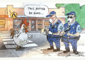 Moral of the story: don't be a chicken!: Moral of the story: don't be a chicken!