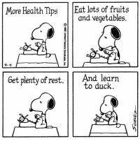 Memes, Duck, and 🤖: More Health Tips  Eat lots of fruits  and vegetables.  Get plenty of rest  And learn  to duck This strip was published on September 4, 1982.