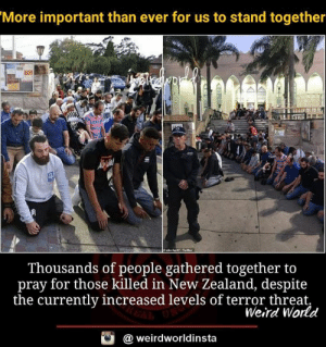 Memes, Weird, and New Zealand: More important than ever for us to stand together  Thousands of people gathered together to  pray for those killed in New Zealand, despite  the currently increased levels of terror threat.  Weird World  @ weirdworldinsta