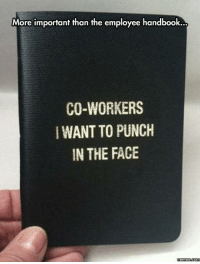 Every workplace should have this.: More important than the employee handbook...  CO-WORKERS  WANTTO PUNCH  IN THE FACE  Memes  com Every workplace should have this.