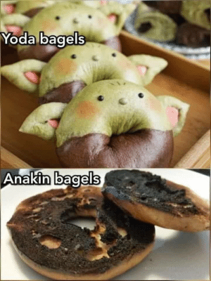 More like youngling bagels: More like youngling bagels