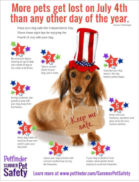 Food, Frozen, and Independence Day: More pets get lost on July 4th  than any other day of the year  Source: HomeAgain  Keep your dog safe this Independence Day.  Share these eight tips for enjoying the  Fourth of July with your dog.  Be sure your dog is  wearing an up-to-date  and visible ID tag on  her collar at all times.  Take a current  photo of your  dog, just in case.  Exercise your dog  early in the day  before parties begin  4  During cookouts, ask  guests to play with  your dog away from  the flames  e0  Keep charcoal,  fireworks, sparklers and  glow sticks far from  curious canines.  eep me  sate.  Keep dog treats on  hand for those who  want to give your  dog food.  y s  Petfinder  SUMMER Pet  Leave your dog at home with  a frozen stuffed treat during  the fireworks.  If your dog is afraid of loud  noises, leave gentle music  playing to cover the fireworks.  Safety  afety  Leam more at www.pettinder.com/SummerPetsSatoty  Learn more at www.petfinder.com/SummerPetSafety An annual reminder for pet safety during the 4th of July! ❤️💙 https://t.co/khhtSWqWpQ