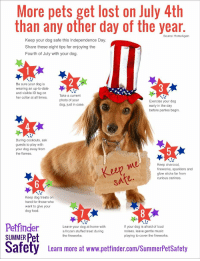 """Animals, Food, and Frozen: More pets get lost on July 4th  than any other day of the year  Source: HomeAgain  Keep your dog safe this Independence Day  Share these eight tips for enjoying the  Fourth of July with your dog.  Be sure your dog is  wearing an up-to-date  and visible ID tag on  her collar at all times.  Take a current  photo of your  dog, just in case.  Exercise your dog  early in the day  before parties begin  4  During cookouts, ask  guests to play with  your dog away from  the flames  ep  Keep charcoal,  fireworks, sparklers and  glow sticks far from  curious canines.  2  Keep dog treats on  hand for those who  want to give your  dog food.  Leave your dog at home with  a frozen stuffed treat during  the fireworks.  If your dog is afraid of loud  noises, leave gentle music  playing to cover the fireworks.  SUMMER Pet  Safety  Leam more at www.pettinder.com/SummerPetsSafoty <h2><b>just a reminder everyone</b></h2><p><a href=""""http://babyanimalgifs.tumblr.com/"""" target=""""_blank"""">baby <b>animals</b> blog</a></p>"""