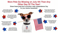 Dogs, Frozen, and Independence Day: More Pets Go Missing on July 4th Than Any  Other Day Of The Year!  Share these great tips to provide a safe Independence Day  for your canine household!  Take your dog for a long walk  before the festivities begin This will  Leave your dog at home with all the  windows securely closed and al  shades drawn. Turn on some music to  drown out noise from fireworks  allow them to potty  before the noise  begins and it tires them out  Never use fireworks around  your dog.The noise can spook  them into taking off, or they can  accidentally get burned by the  Leave your dog with  something to play with  (A frozen kong stuffed with  treats will last hours).  Make sure your dog is wearing an  ID collar with your current  contact info Collars can come  off, so microchip your dog as well  (and be sure to register it).  Consider staying home with  your dogs to insure they  remain safe, especially d  they have anxiety  Loud, crowded fireworks  displays are no fun for dogs  Resist the urge to bring your  dog with you to the festivities  If your dog is extremely  anxious, consult with  your vet about giving a  mild sedative to help  calm your dog With the July 4th Holiday quickly approaching please keep your pets in mind. Fireworks can be very scary for them so best to keep them safe at home inside with windows closed, A/C on, TV or Music on and make sure their ID Tags are on their collars and that their microchips are registered and up to date.   If you use any CBD oils or any type of calming treats make sure you give them BEFORE the fireworks start so they have time to get into their system and work. Thundershirts work for some dogs as well. Prevention is the best medicine. Have a safe fun 4th of July!!🇺🇸💥  #nybcPSA #nybc #newyorkbullycrew #keepyourpetshome #fourthofjuly #fireworksarescary #commonsense
