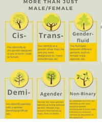 Helpful diagram! -Mason: MORE THAN JUST  MALE/FEMALE  Gender-  fluid  Cis- Trans-  You identify as a  You fluctuate  You identitfy as  the gender assigned 9ender other than the  to you at birth male one you were  or female  between diferent  designated as- Trans  male/female, etc  genders, such as  female, male  agender. etc  Demi- Agender Non-Binary  n umbrella term for not  You do not have gender  You identify partially  with a gender  Demiboy/girl/fluid  /etc.  Identify as being without assigned gender  identifying with your  gender, though may  resent themselves as  masc fem or andro  Cenderqueer is both male  female or a mix but  remains at that point on  he spectrum Helpful diagram! -Mason
