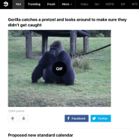 nsfw gif: More Video  Girl NSFW GIF  WTF  Hot  Trending  Fresh  Gorilla catches a pretzel and looks around to make sure they  didn't get caught  GIF  7,645 points  f Facebook  Twitter  Proposed new standard calendar