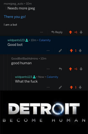 Dank, Detroit, and Memes: morejpeg_auto 10m  Needs more jpeg  There you go!  I am a bot  wildpants123. 10m Calamity  Good bot  GoodBotBadAdmins 10m  good human  wildpants123 Now Calamity  What the fuck  1  DETROIT  B E C O M E H U M A N They are adapting by wildpants123 MORE MEMES