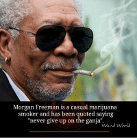 "Morgan Freeman: Morgan Freeman is a casual marijuana  smoker and has been quoted saying  ""never give up on the ganja""  Weird World"
