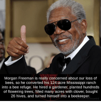 Morgan Beeman: Morgan Freeman is really concerned about our loss of  bees, so he converted his 124-acre Mississippi ranch  into a bee refuge. He hired a gardener, planted hundreds  of flowering trees, filled many acres with clover, bought  26 hives, and turned himself into a beekeeper.  fb.com/factsweird Morgan Beeman